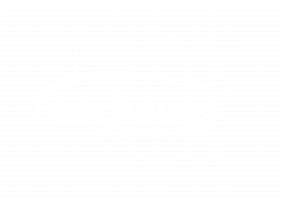 Aschauer IT & Business easy-learning